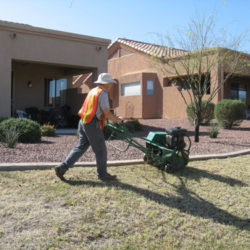 Reasons to Schedule Commercial Landscape Renovations Before the Winter